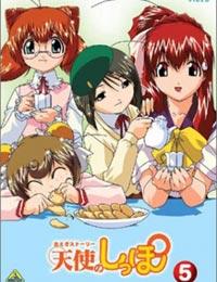 Tenshi no Shippo (Dub) poster