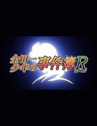 Poster of Kindaichi Shounen no Jikenbo Returns: Akechi Keibu no Jikenbo