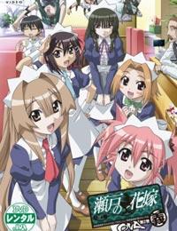 Poster of Seto no Hanayome - OVA