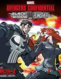 Marvel Avengers Confidential: Black Widow & Punisher (Dub) poster