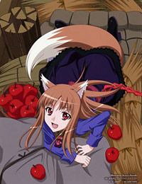 Poster of Spice and Wolf II Specials