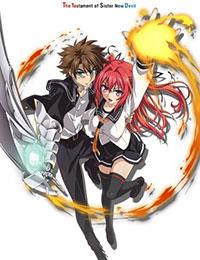 Poster of The Testament of Sister New Devil - OVA