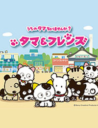 Tama & Friends: Uchi no Tama Shirimasenka?